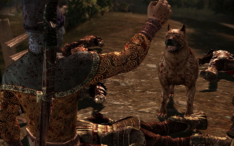 cinématique avec chien